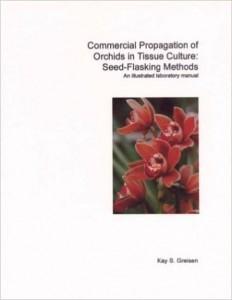 Orhid propagation